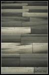 archilifography_prj01_004